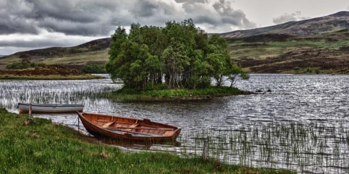 Serene river bank