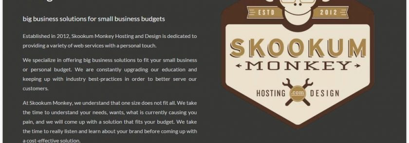 Resumé Theme – The Latest Demo From Skookum Monkey
