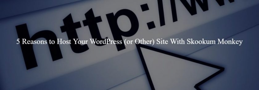 5 Reasons to Host Your WordPress (or Other) Site With Skookum Monkey